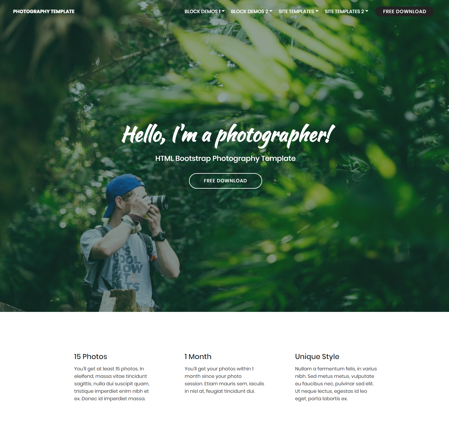 CSS3 Bootstrap Photography Themes