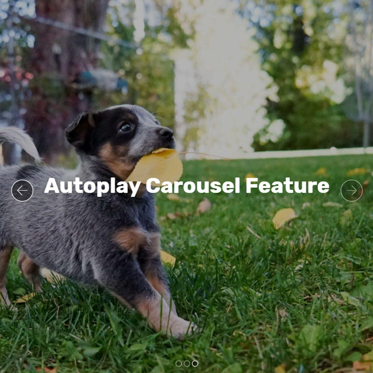 Mobile Bootstrap Photo Slider